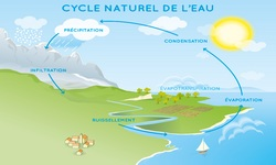 1 cycle naturel eau